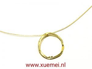 "Gouden hanger ""Circle of our life"" op ketting"