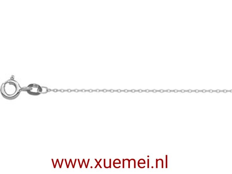 edelsmid Delft witgouden ketting 1 mm